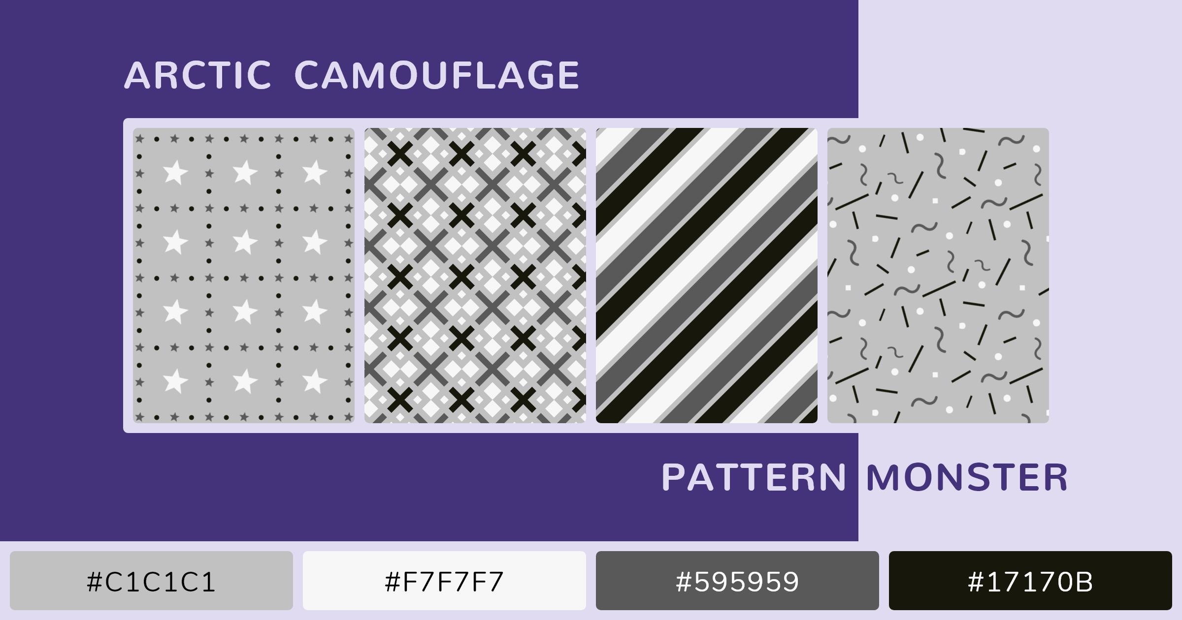 Arctic Camouflage